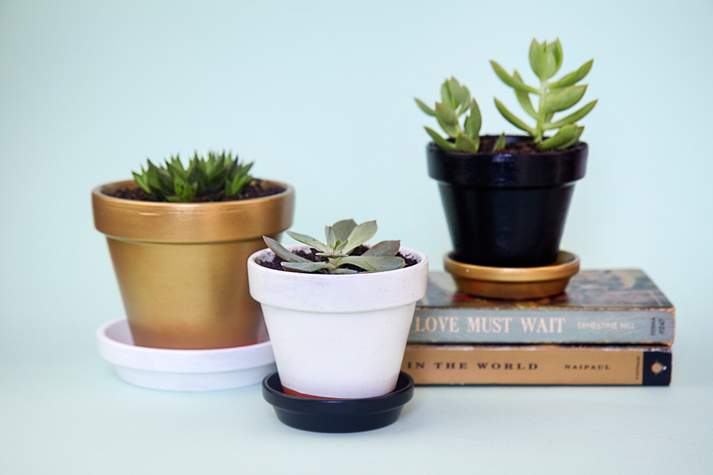 Make your pots super classy with gold, black and white.