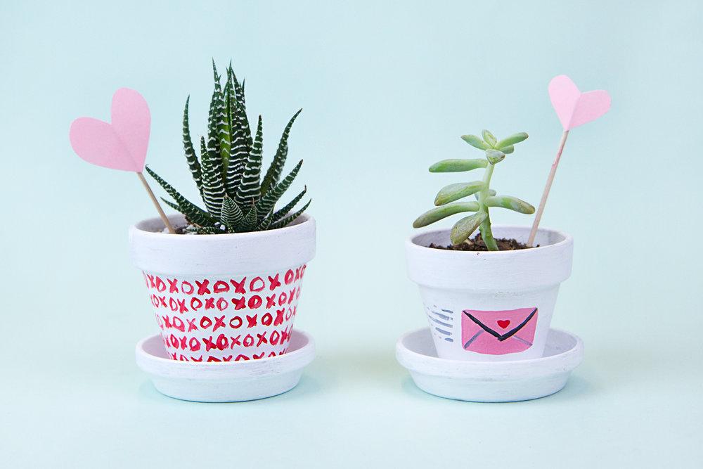 valentines-succulents2.jpg