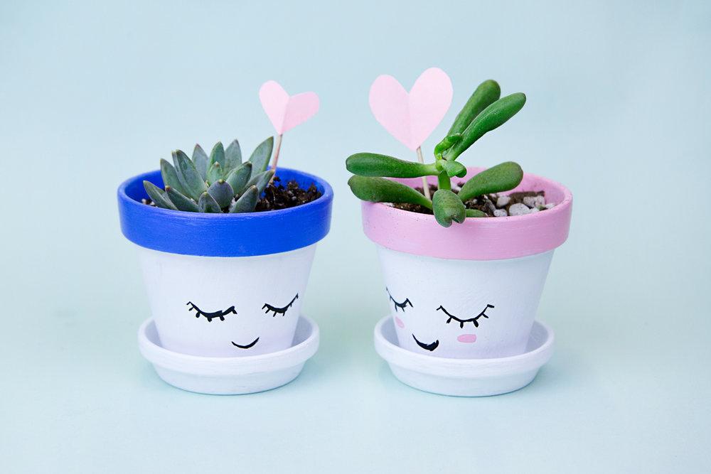 valentines-succulents3.jpg