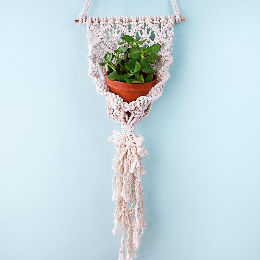 macrame-masterclass-plant.jpg