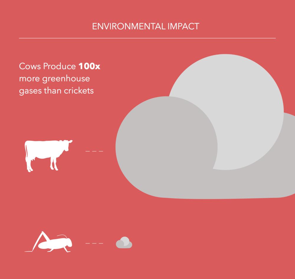 environmental_impact_big.png