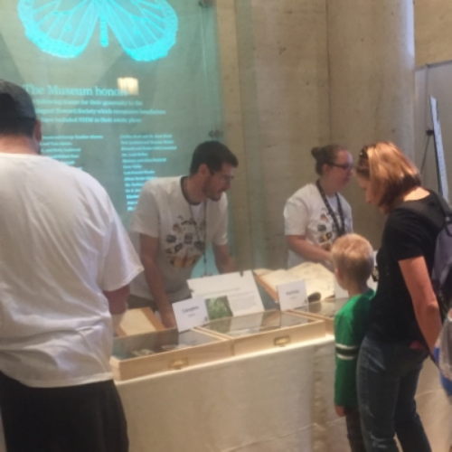 Learning about insects with the Bug Fair Staff