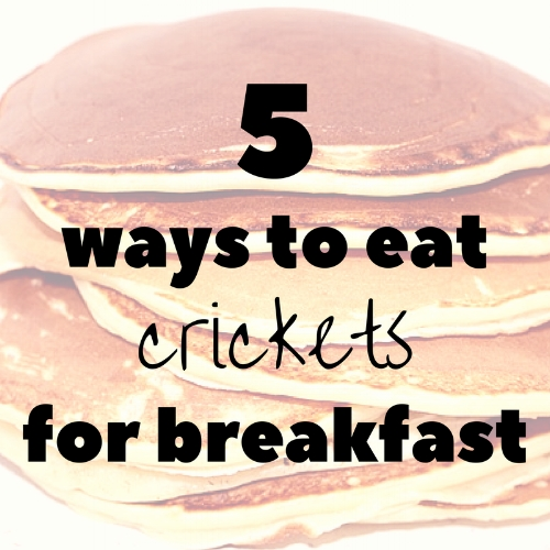 5-ways-to-eat-crickets-for-breakfast