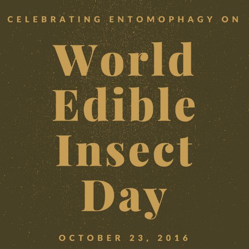 World-edible-insect-day