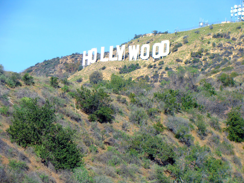 the confused millennial hollywood sign
