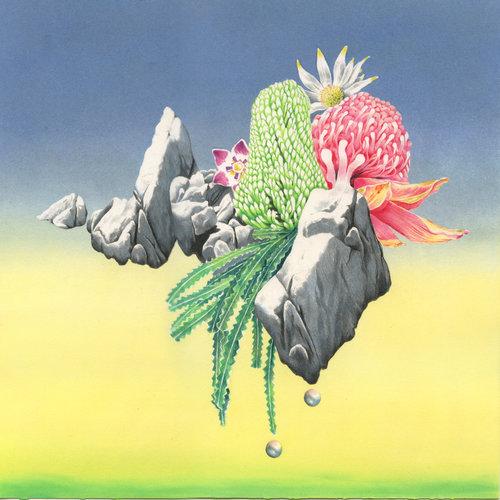 imagined vinyl album cover art dominique merven