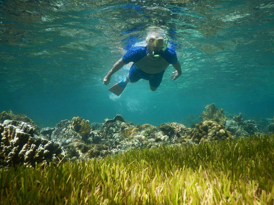 snorkeling5.jpg