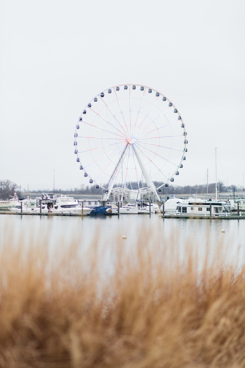National Harbor Engagement DC Wedding Photographer_0020.jpg