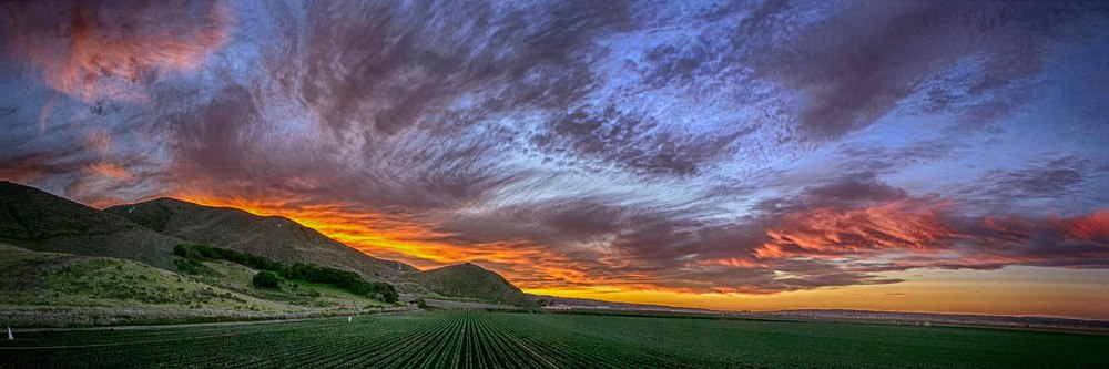 Lompoc Sunset over the fields