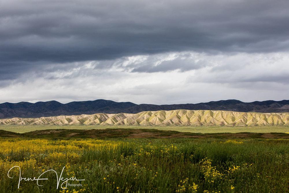 Carrizo plains ridgeline 2017