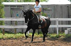 "Robin Pelkey ""I have been at Four Winds for a long time both as a boarder and a student. I started as a student and eventually purchased my horse, Knight (Bred at Four Winds ). I have worked with Kathy, Charles and Linnea. Knight and I would not be where we are today without their help. I will always be grateful to The Throckmorton family for all the support they have given me."""