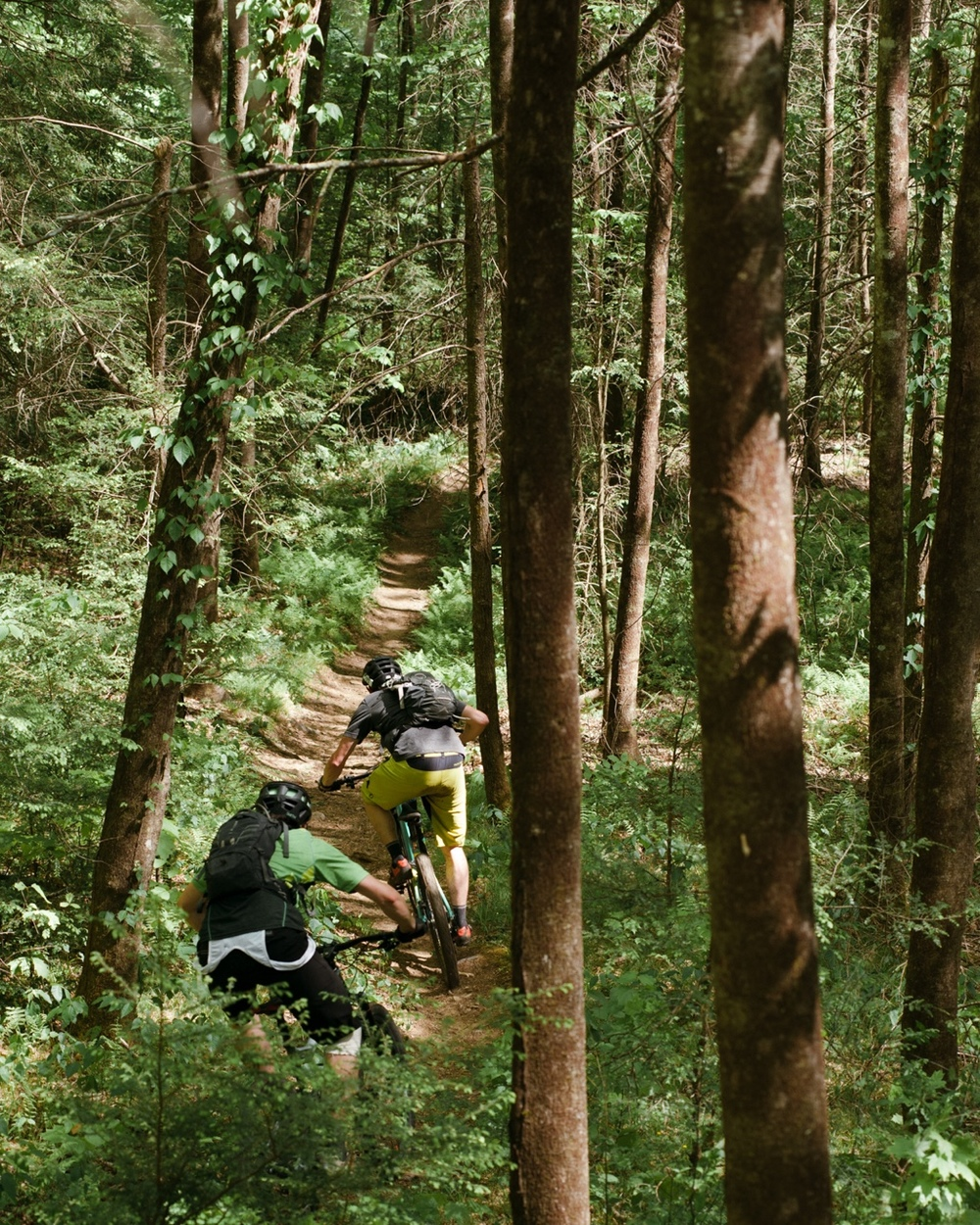 Trail Sessions