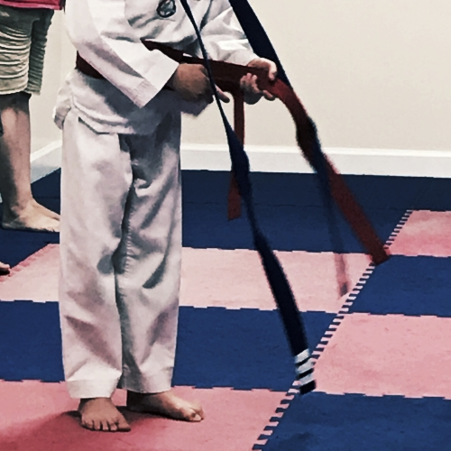 Superhero 2 Red Belt Test