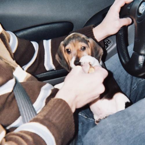 Ranger in Car