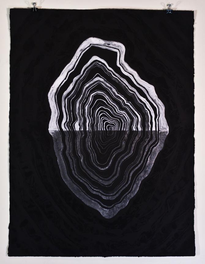 "Stefan Herda,  Organic Form.  Aluminum Potassium Sulfate on Somerset Black Velvet paper. 30"" x 22"". 2012."