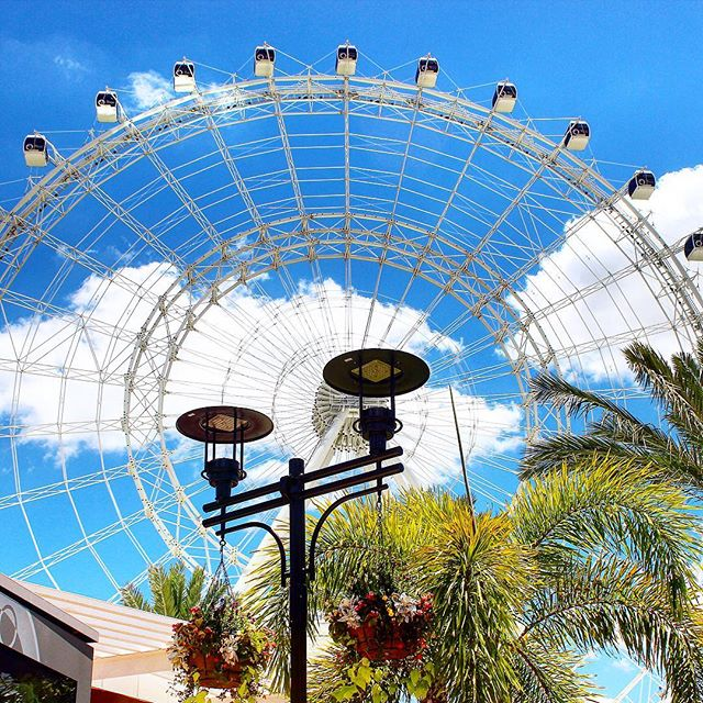 New on the blog we share 5 Fun Things to do This Valentines Day in Orlando! #theorlandotravelguide #amusementparks #seaworld #disneyworld #universalorlando #winterparkfl #travel #orlando #orlandoeye #idrive360 #idriveorlando #restaurants