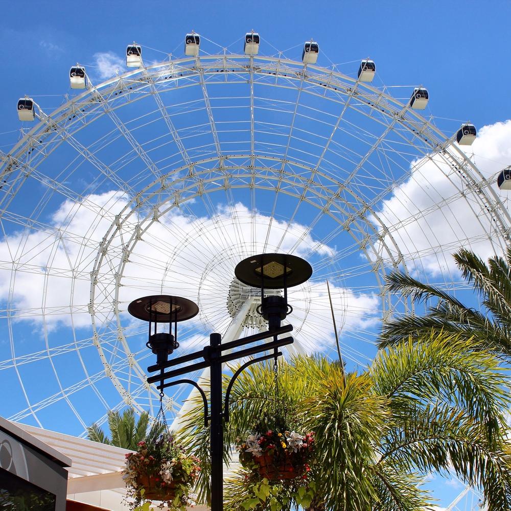Orlando-Eye-1.jpg