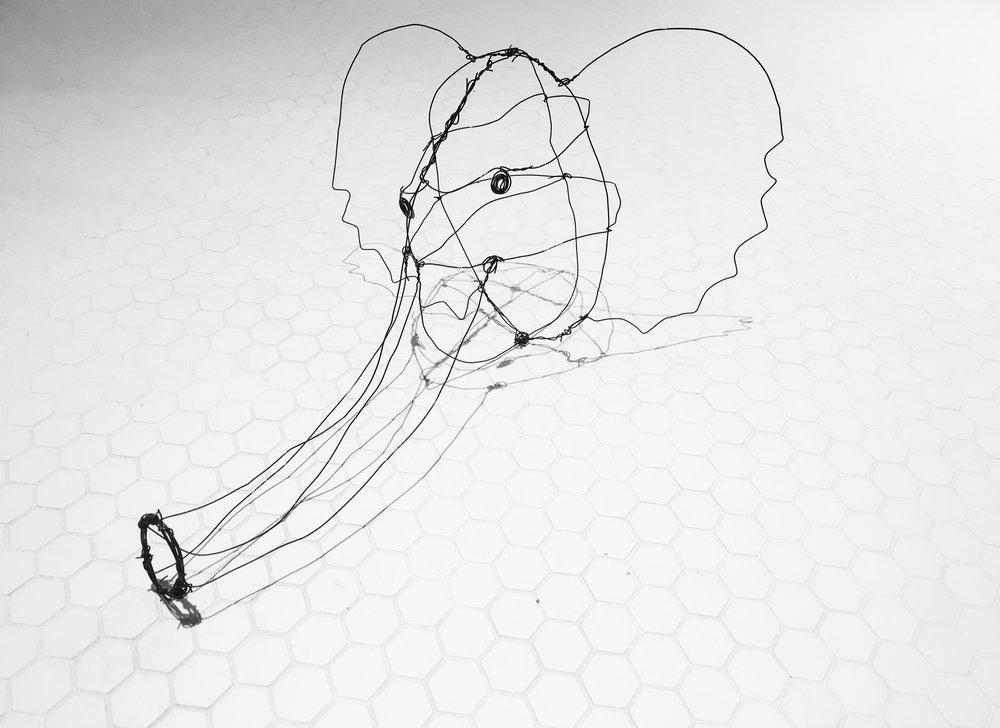 Wire Elephant, 2016