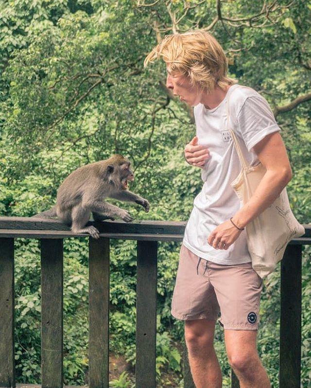 """""""Å inni heiane!"""" Sørlandsk uttrykk for å beskrive stor begeistring, overrumplende ape-relasjon eller bare et himla bra opphold på KRIK Bali 🤙🏼"""