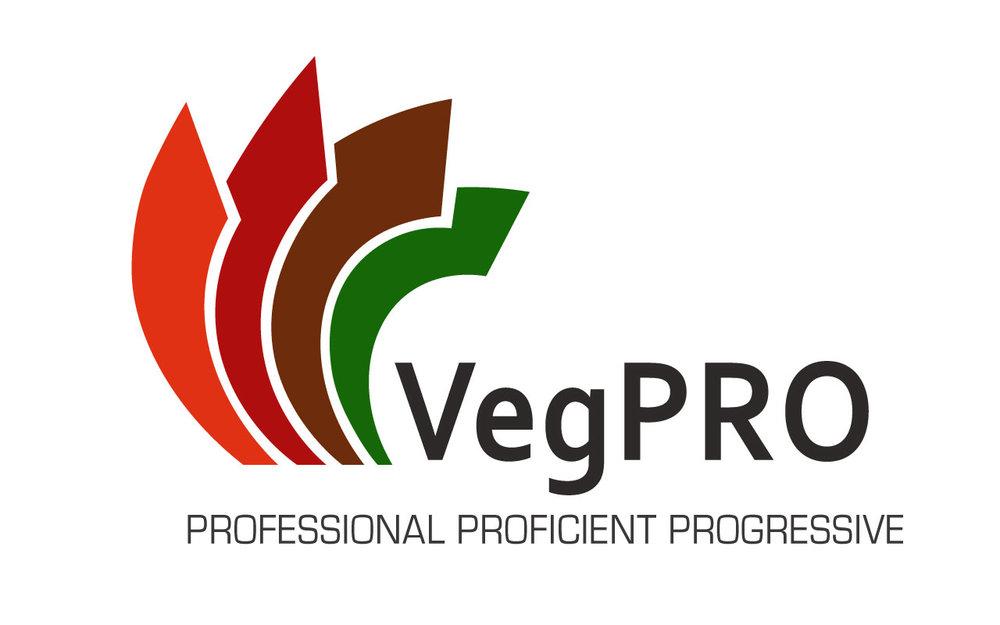 VG15028 VEGPRO-LOGO-V2 DB.jpg