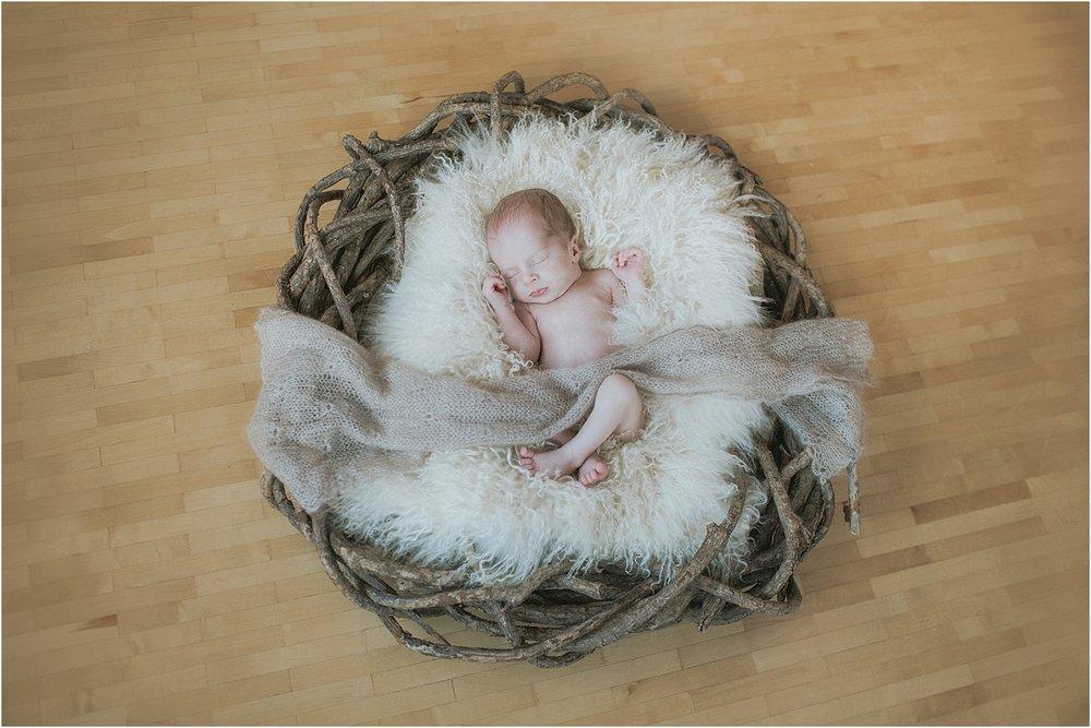 Neugeborenenfotos-Ludwigsburg.jpg