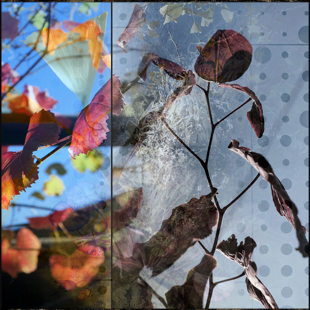 "Mayako's Palette (20"" x 20"") Tony DeVarco"