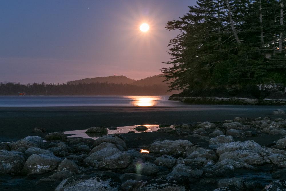 tofino_surf_photography_midnight_moon_frank_island_Canada_Vancouver_Isand_2018.jpg