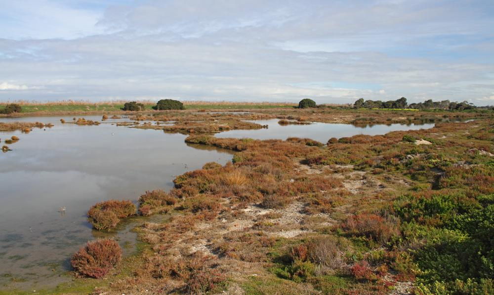 Port Phillip Bay and Bellarine Peninsula