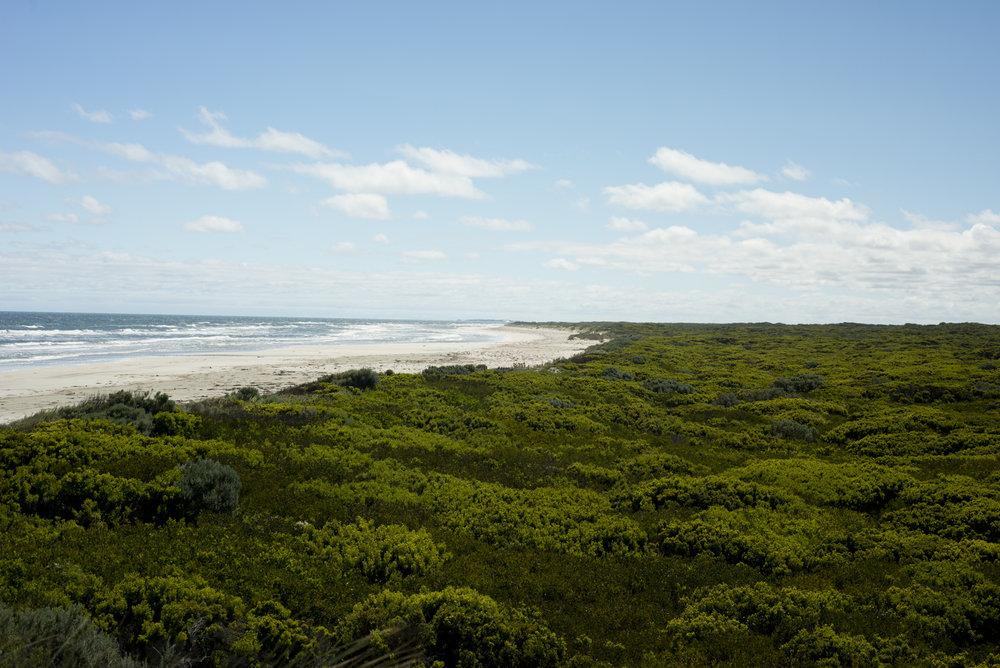 Glenelg Estuary and Discovery Bay Wetlands