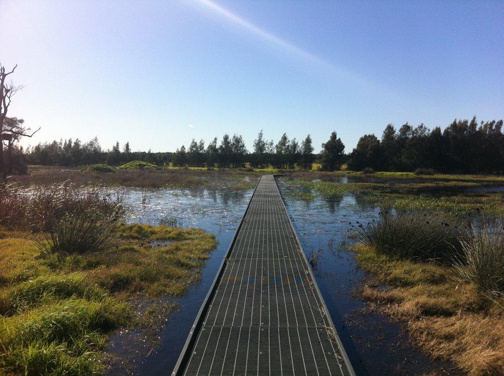 Hunter Estuary Wetlands