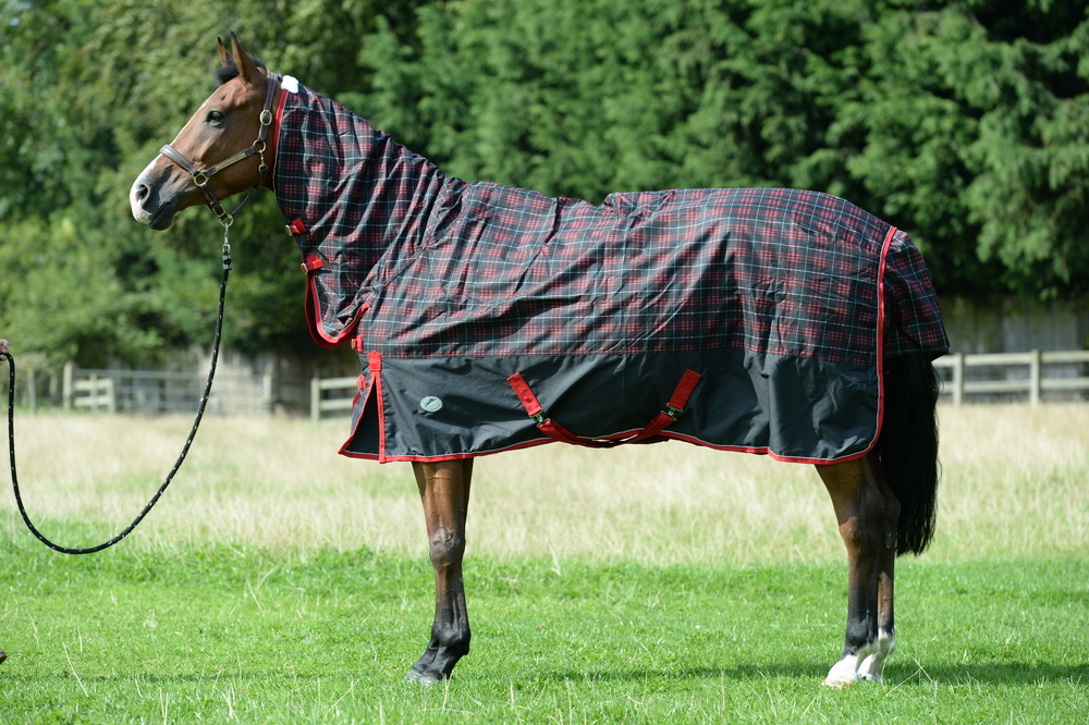 The JHL Mediumweight Combo Turnout Rug won our Gear Guide test in January 2016.