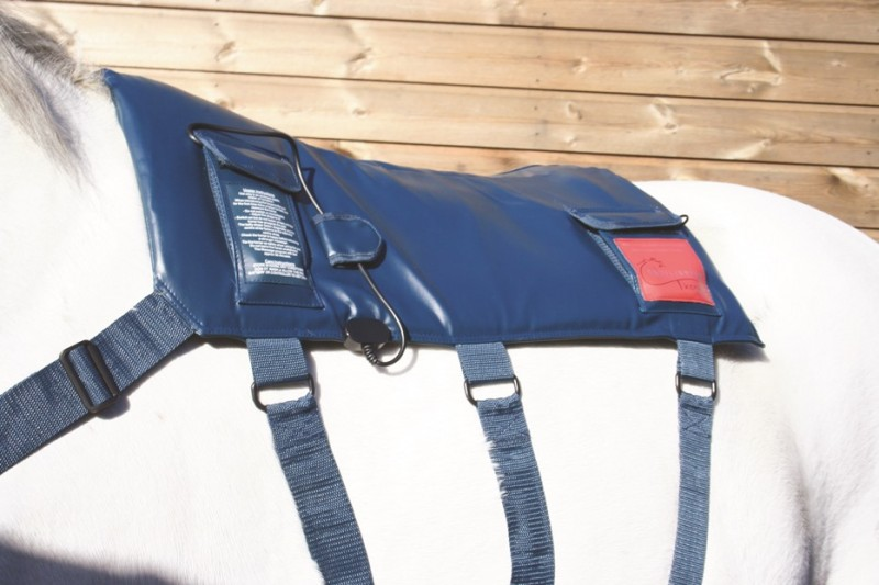 Equilibrium Products Massage Pad