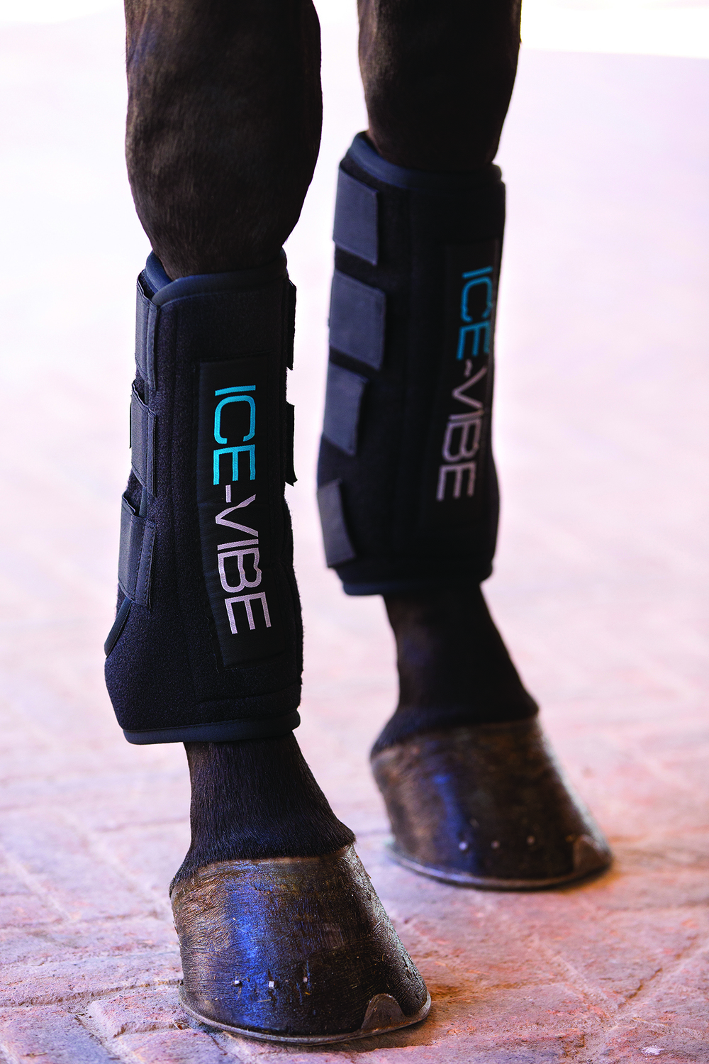 IceVibe boots from Horseware