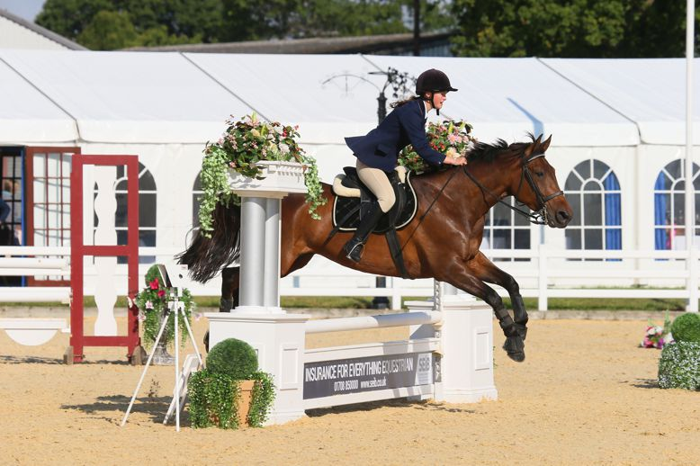 In July, horses and ponies from across the country will descend upon Stoneleigh Park in Warwickshire for the SEIB Trailblazers Championships - what's more, they'll be armed with all the info they need from the new Trailblazers website