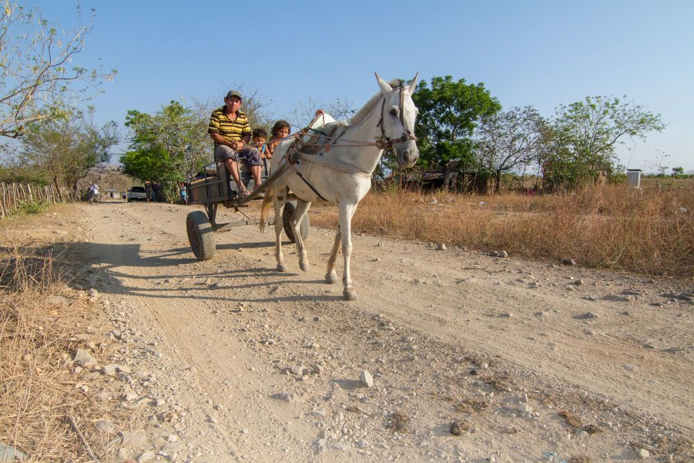 Families rely on horses for travel in Honduras