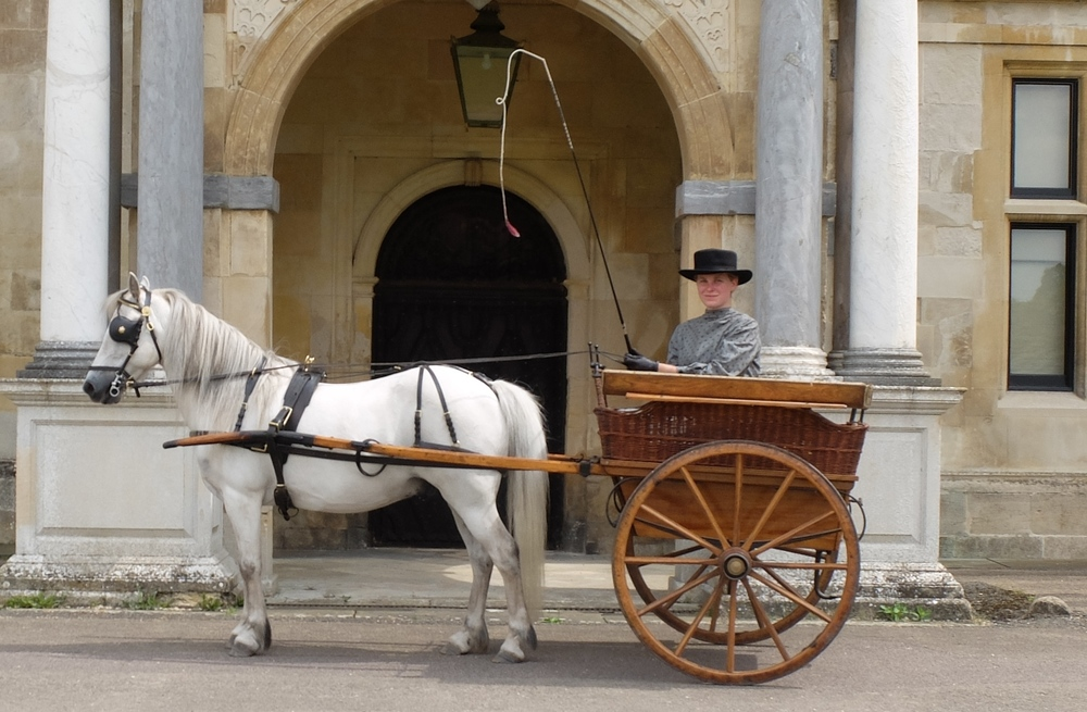 Audley End House & Gardens will host an exciting Horses in Harness showcase this weekend.