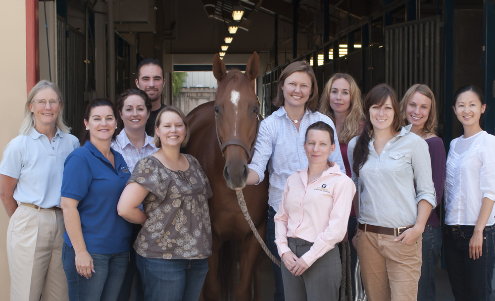Dr. Sue Stover (far left) with members of the J. D. Wheat Veterinary Orthopaedic Research Laboratory