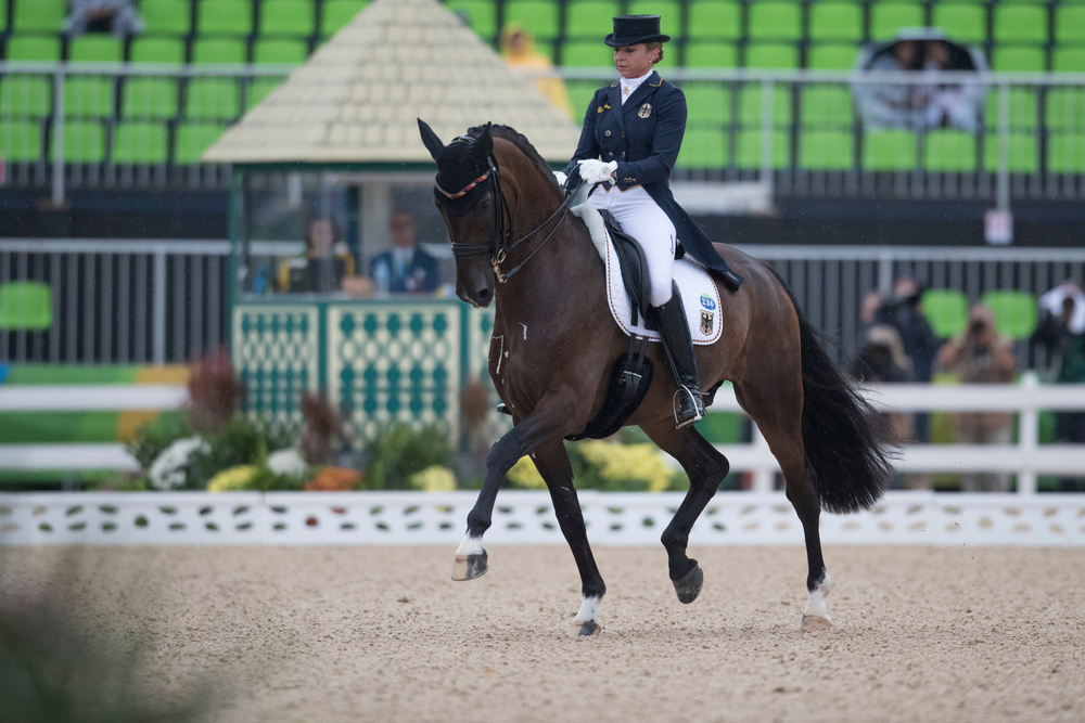 Showtime FRH ridden by Dorothee Schneider for Germany (Credit: Hippo Photo - Dirk Caremans/FEI)