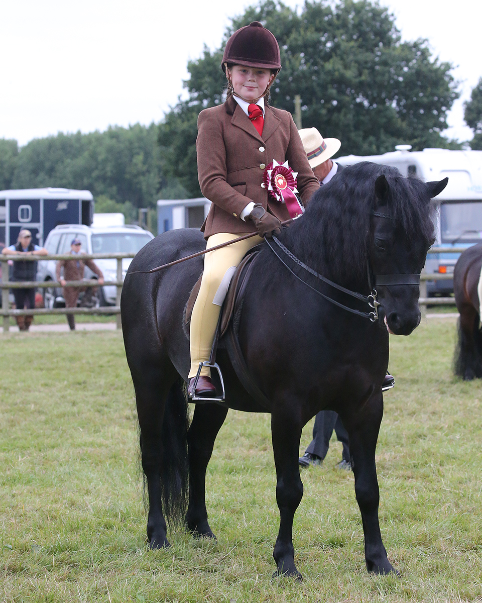 Maria Brown collects a HOYS ticket with Treworgan Atlantus (Credit: 1st Class Images)