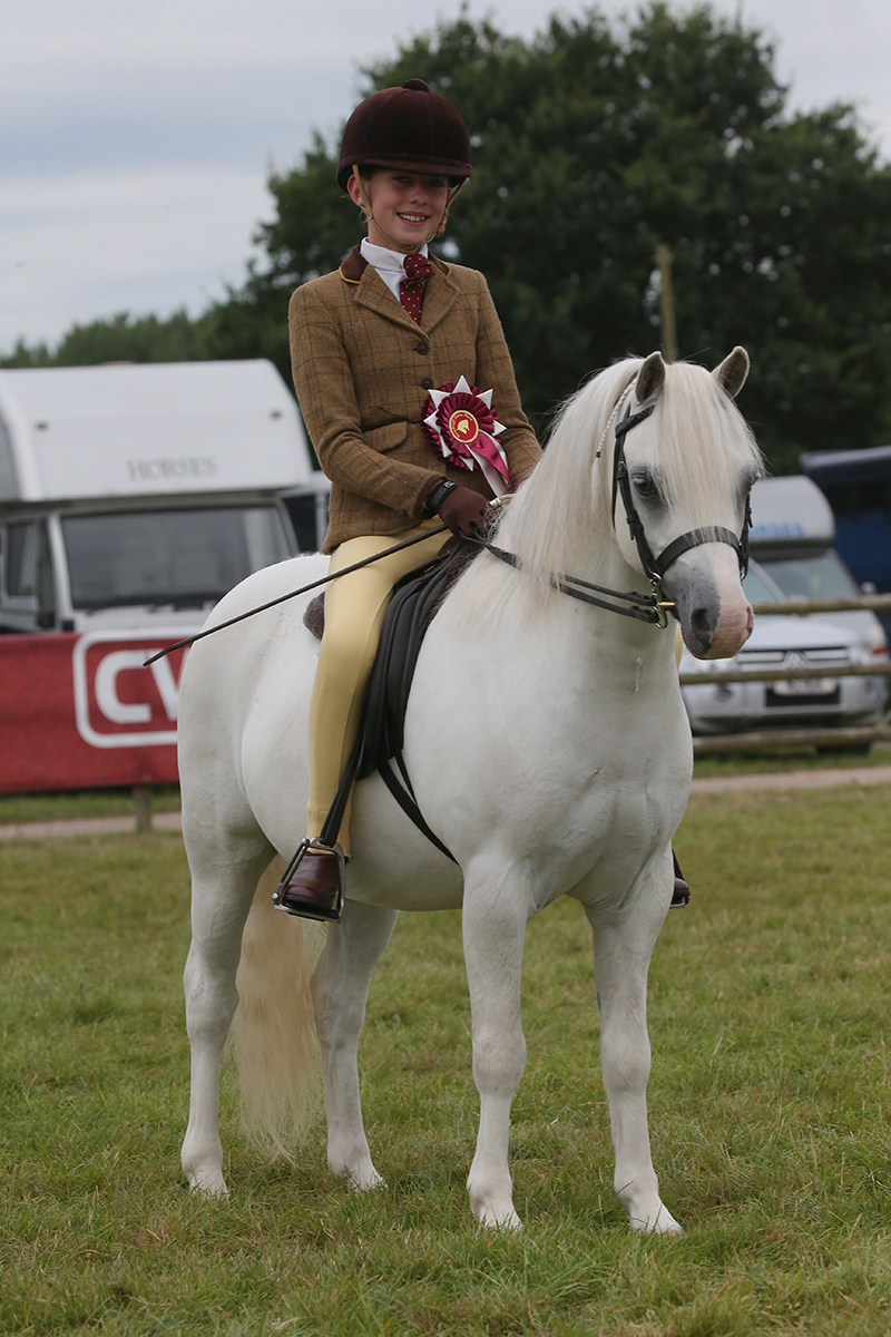Welsh section A Blisland Echo with Samantha Darlington took Champion (Credit: 1st Class Images)