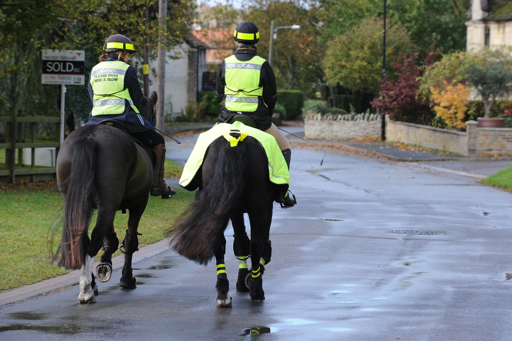 Research has been launched to improve safety of equestrians on the road