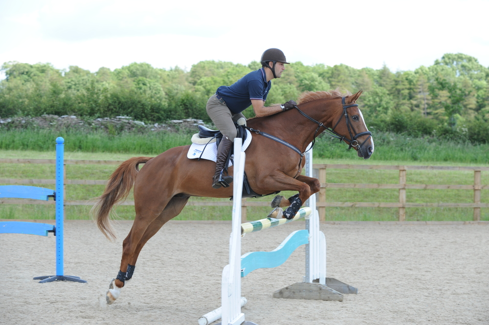 Show jumper Jay Halim is looking for an experienced groom to join his team