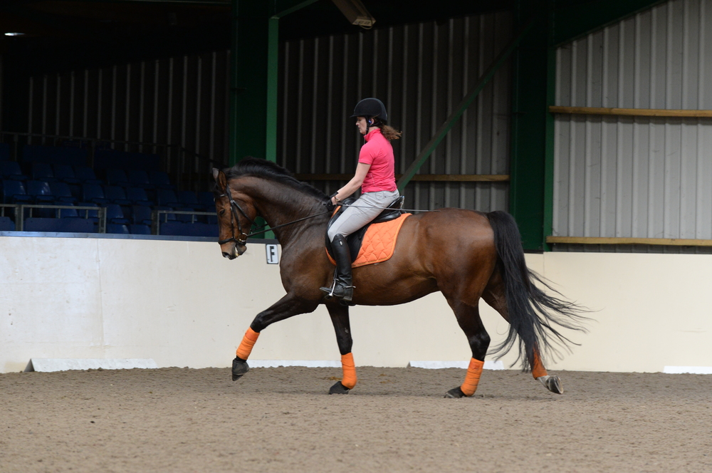 Maintain your position as you ride your downward transition from canter to walk