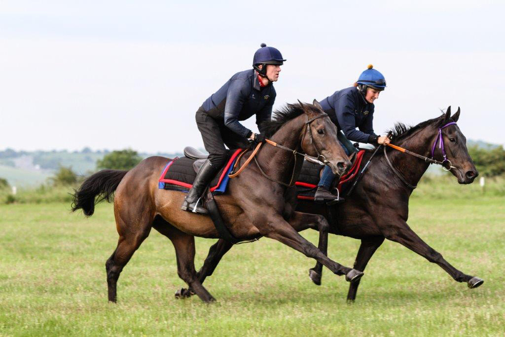Marcus Townend riding Moon Trip for trainer Geoffrey Deacon trains for the 'NTF & HEROS Stable Staff Development' charity race. (Credit: Liesi King)