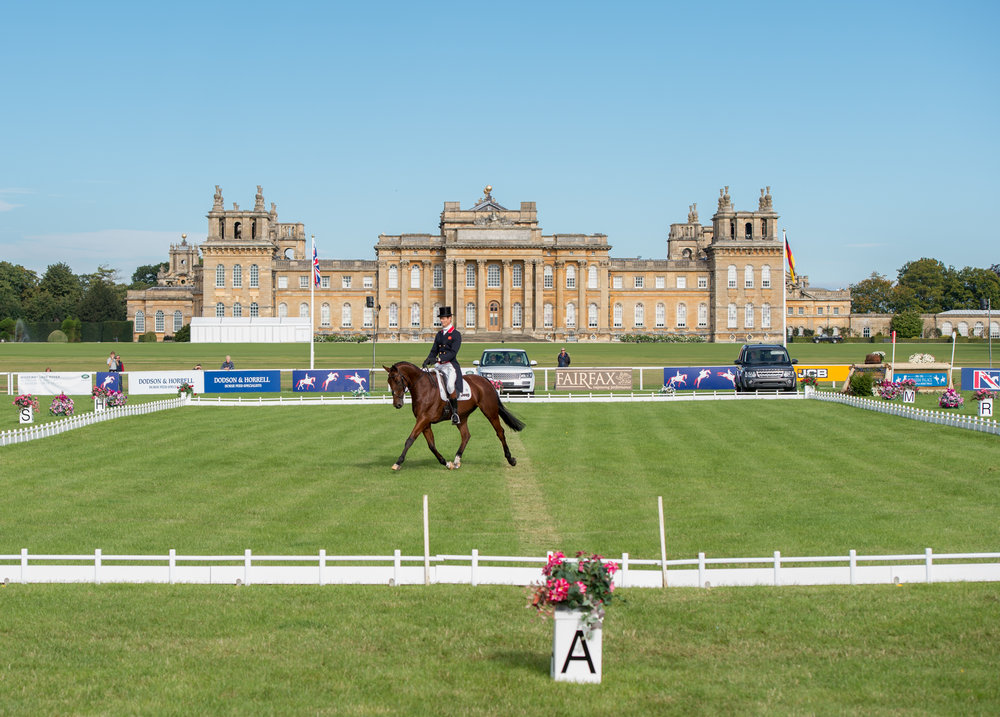 William Fox-Pitt competing at Blenheim Palace International Horse Trials in 2015 (Credit: Adam Fanthorpe/Blenheim Palace International Horse Trials)