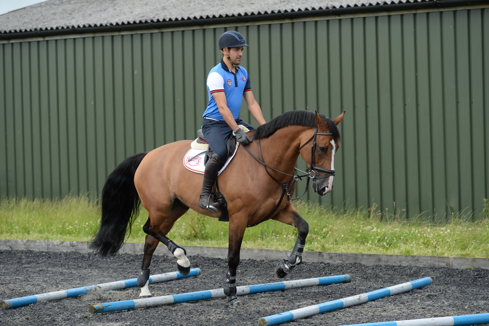 Pole work exercises are a great way to improve your horse's rhythm