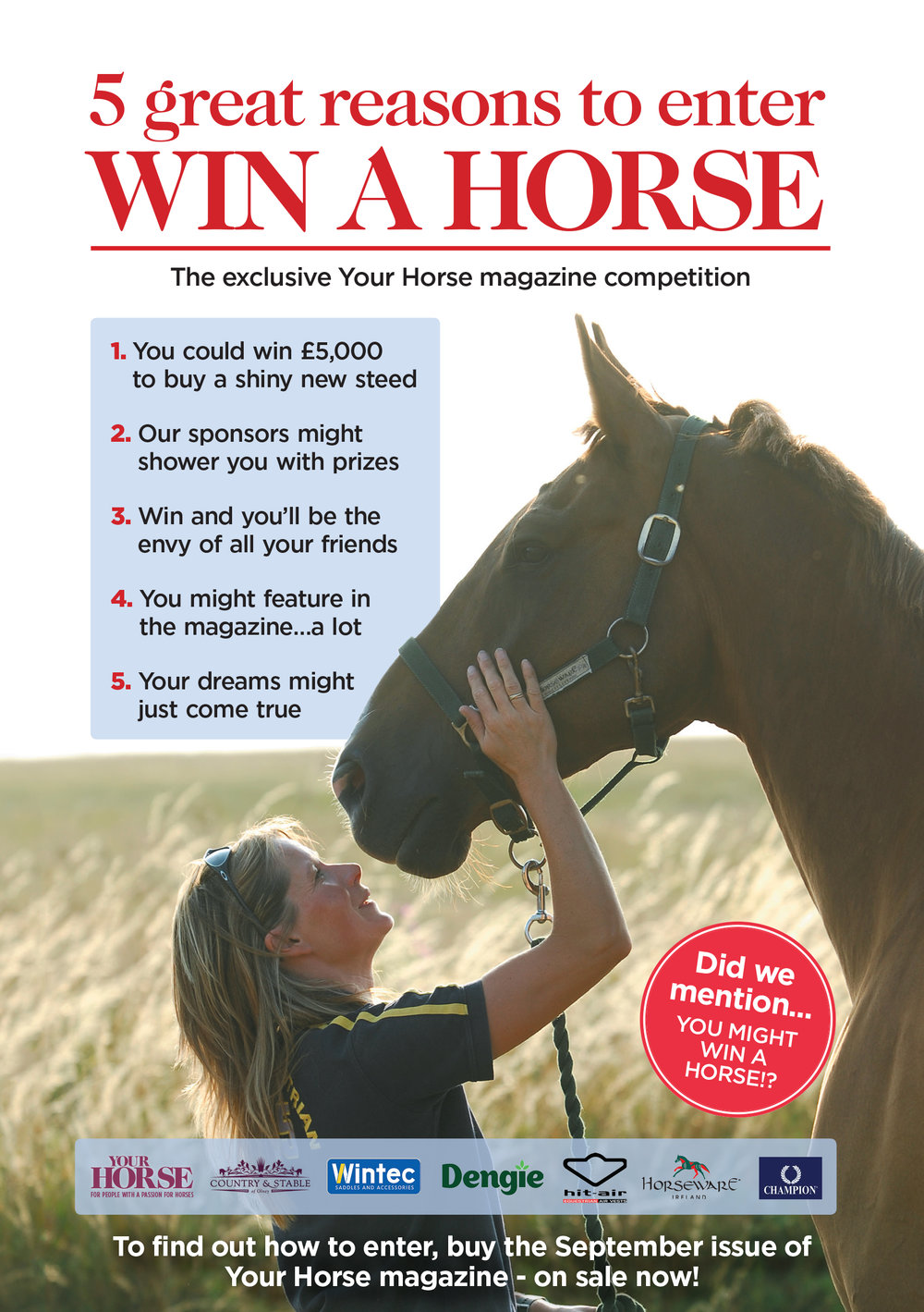win a horse poster