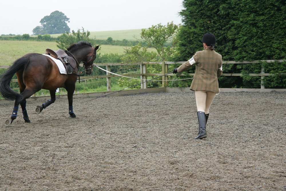 The scholarships will help provide training for the BHSAI qualifications (Credit: British Horse Society)