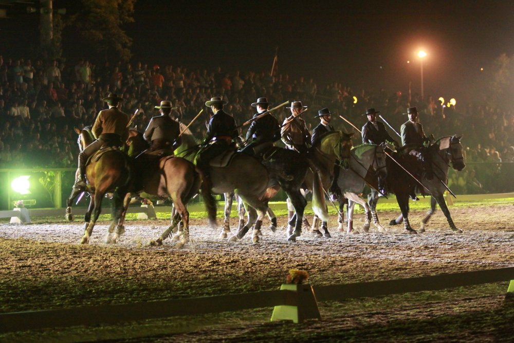 The top Portuguese riders and stallions will demonstrate their equestrian skill at Olympia