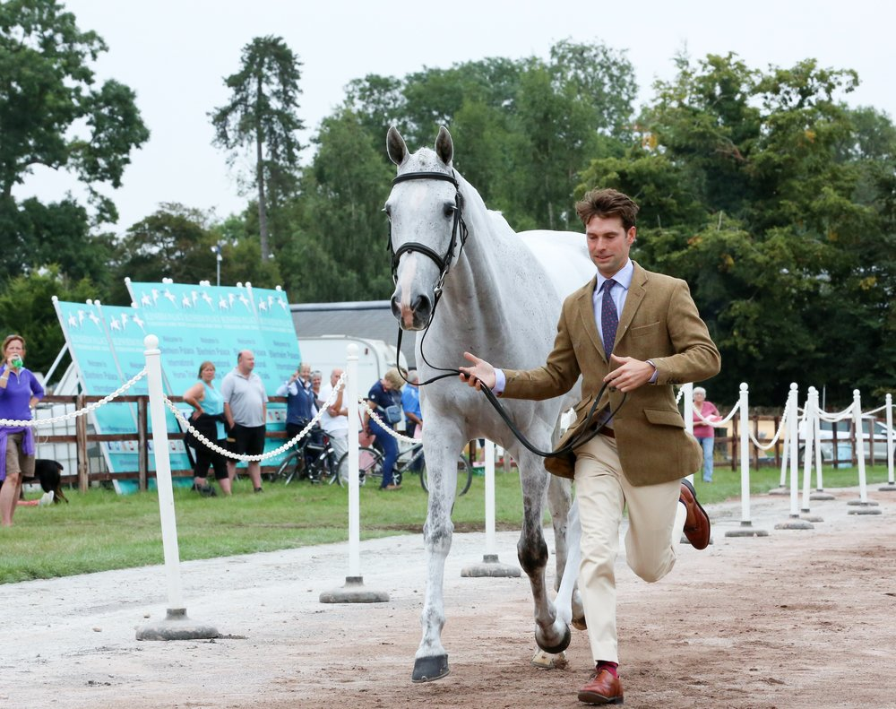 Harry Meade and Away Cruising (Picture: Michael Wynne/Blenheim Palace International Horse Trials)